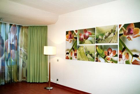 Kunst på vægge, Hospital